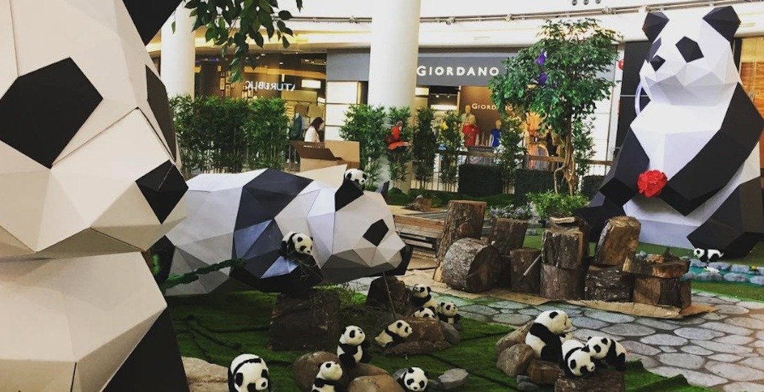 500 giant pandas are taking over the atrium at Aberdeen Centre mall (PHOTOS)