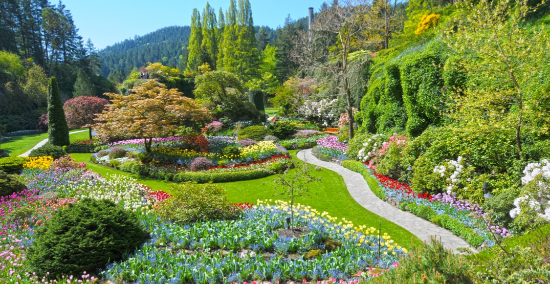 This day trip from Vancouver was named one of the best in the world