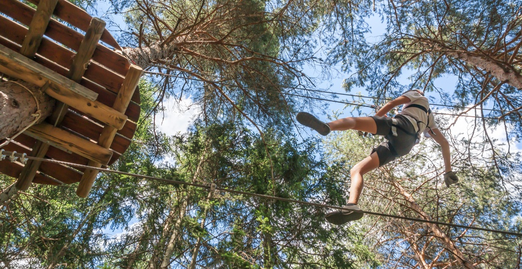 An Aerial Ropes Adventure course is coming to Grouse Mountain this summer