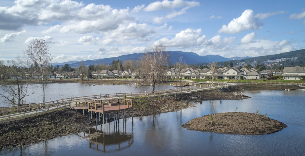 Stunning new 27-acre lagoon public park in Port Coquitlam is an 'urban oasis' (PHOTOS)