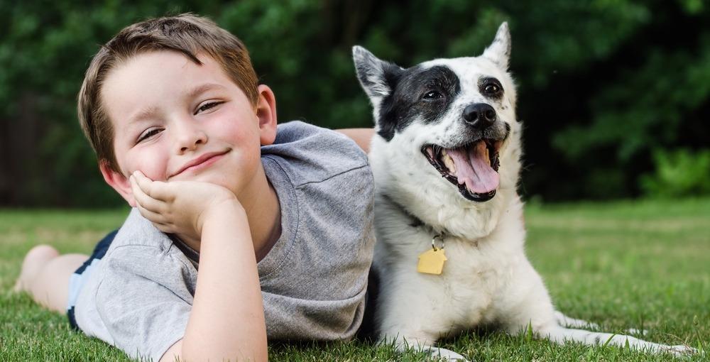 City-run program educates children on how to avoid dog attacks