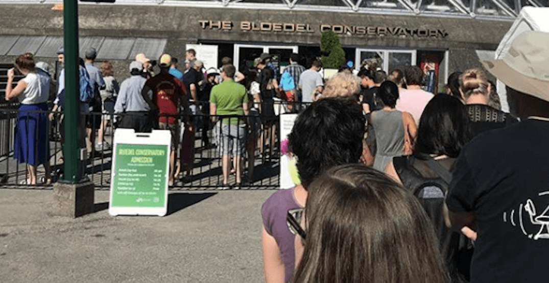 People are standing in line for 2 hours to sniff a plant that smells like sh*t (PHOTOS)