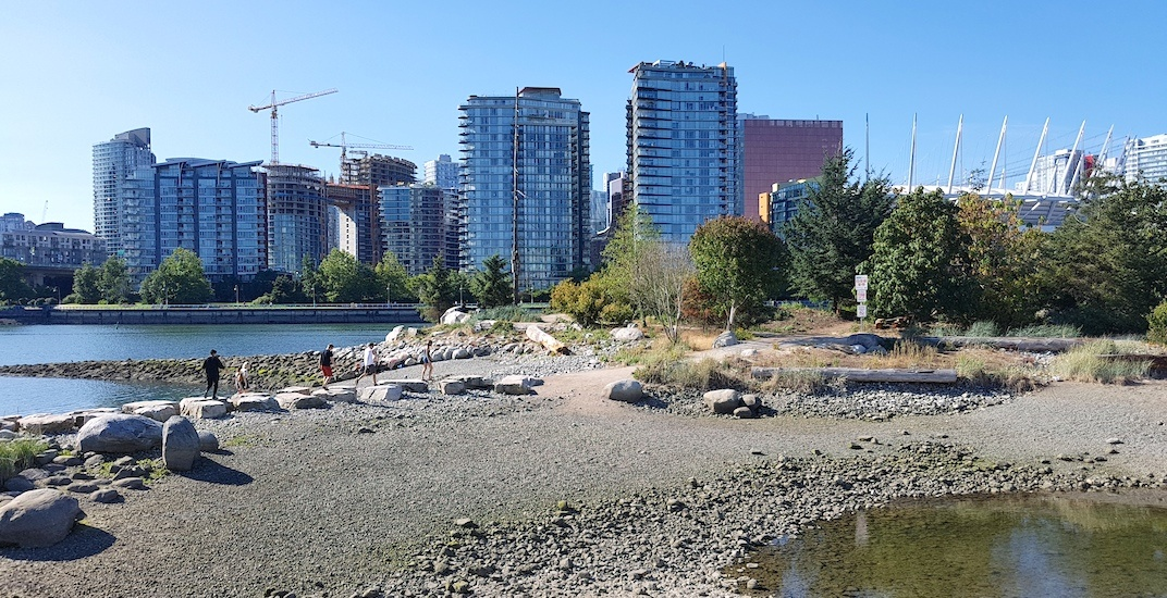 Habitat island false creek olympic village