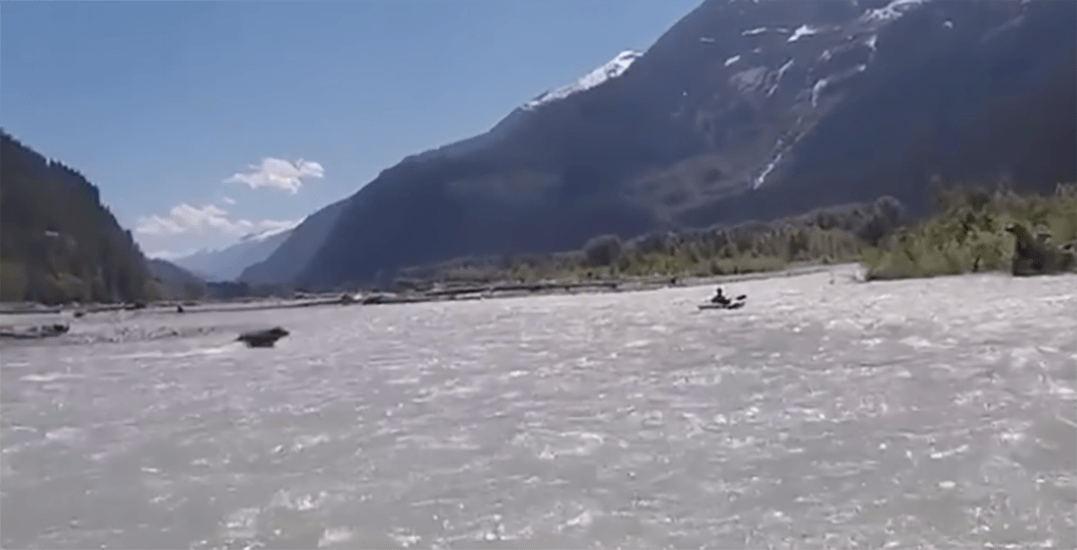 Terrifying footage captures grizzly bear charging kayaker in BC (VIDEO)