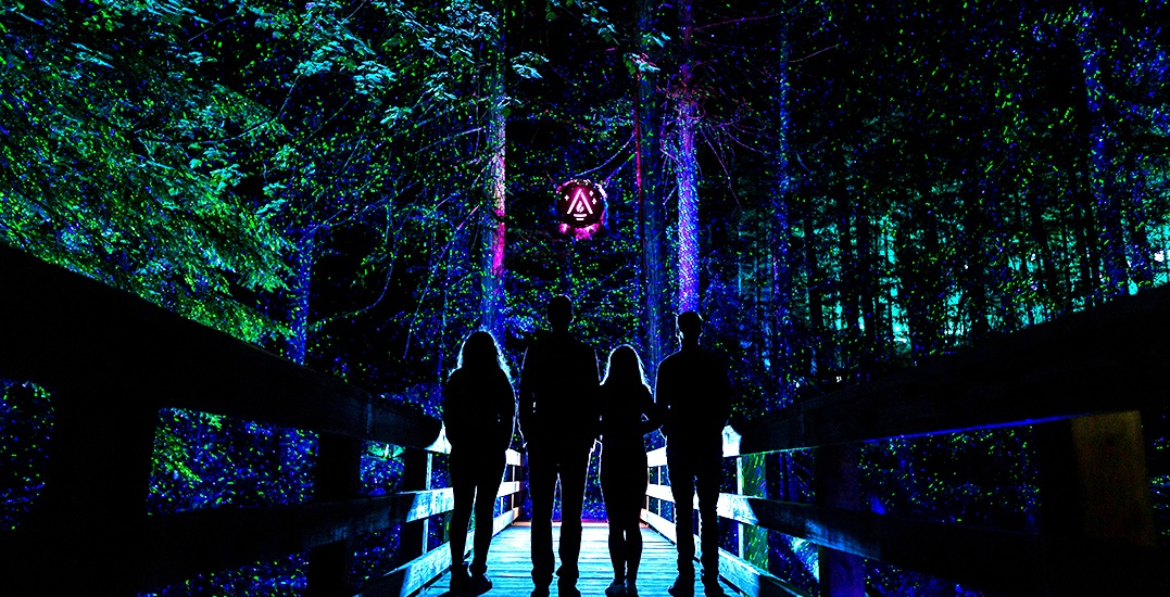 This is your sneak peak at Vallea Lumina, Whistler's light-up night walk (PHOTOS)