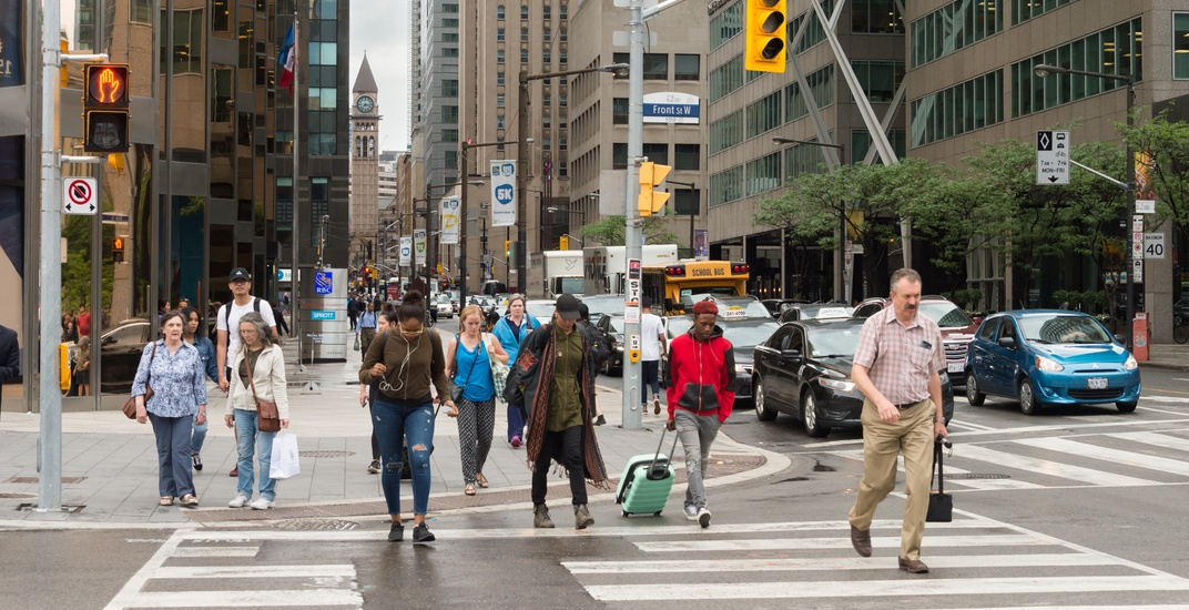 Toronto to get 'advance pedestrian signals' at 80 intersections across the city