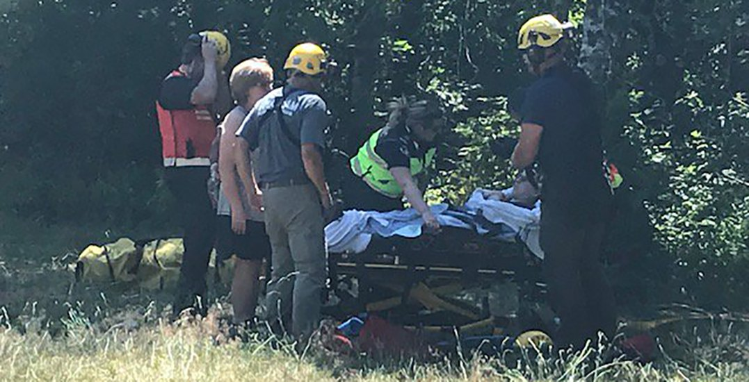 Buntzen Lake hikers airlifted by Coquitlam Search and Rescue after hornet stings