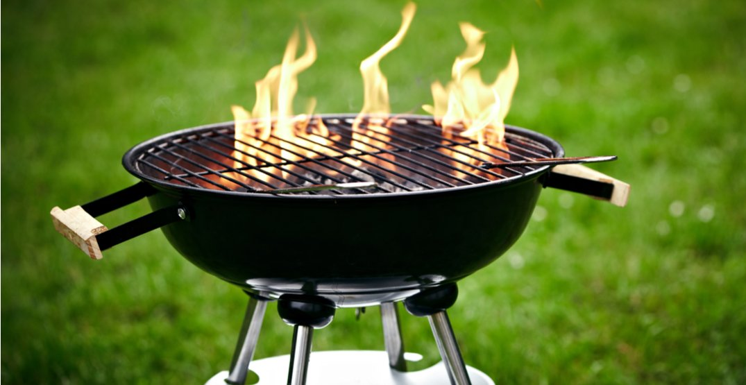 Charcoal barbecues banned in some Vancouver parks due to fire hazard