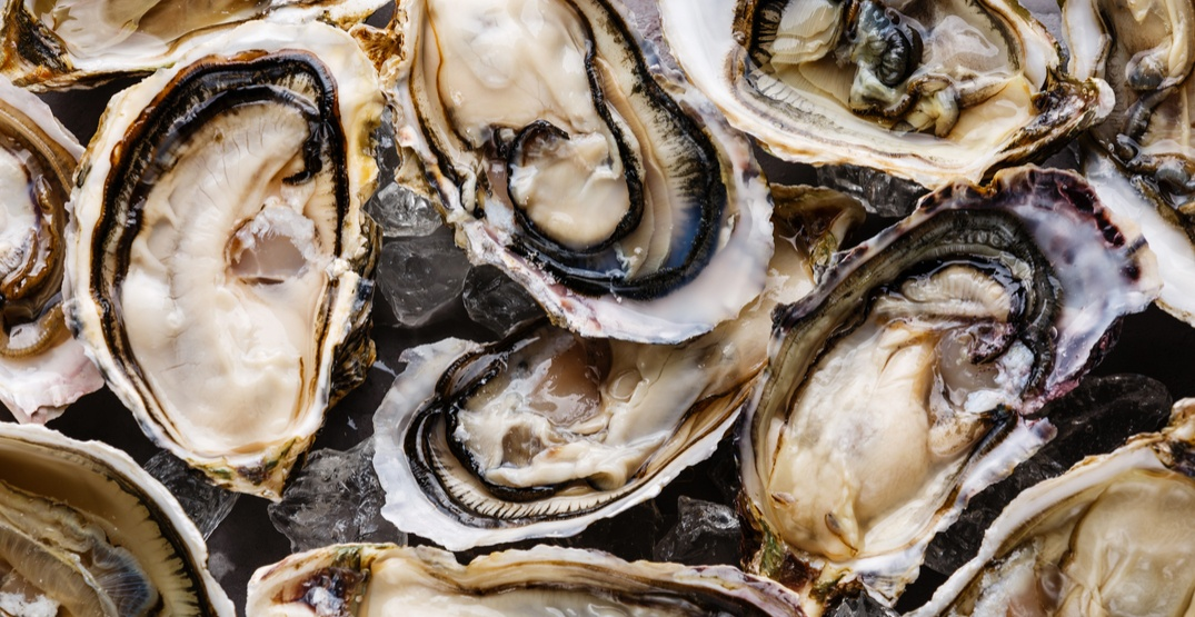 Recall issued for potentially contaminated oysters sold in Ontario