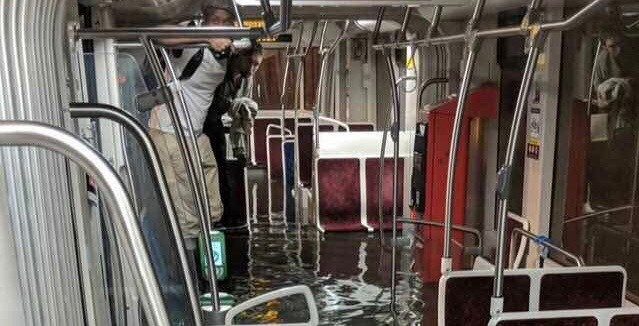 TTC service has been suspended along Line 1 due to flooding