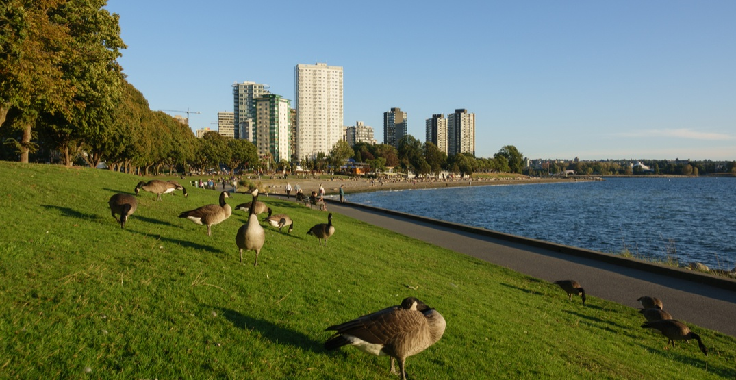 Stanley Park to close to all car access
