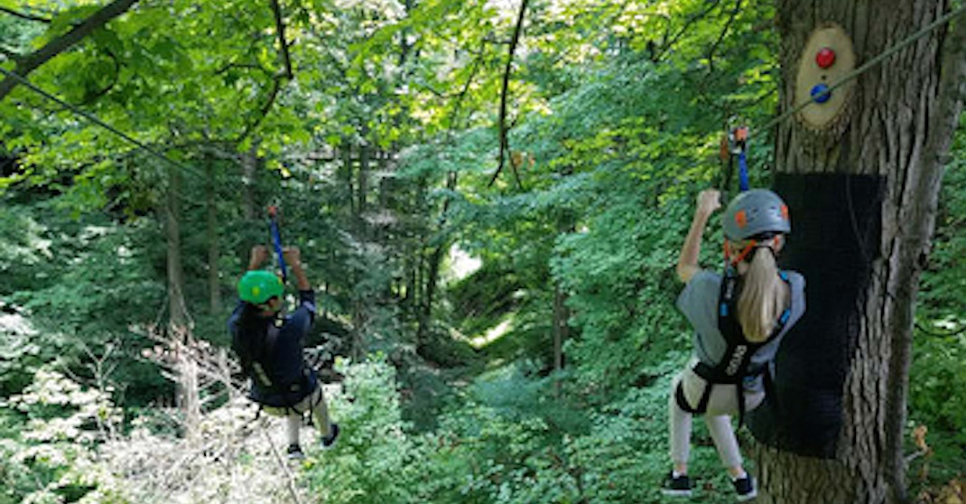 You need to try the Toronto Zoo's new zipline before summer ends