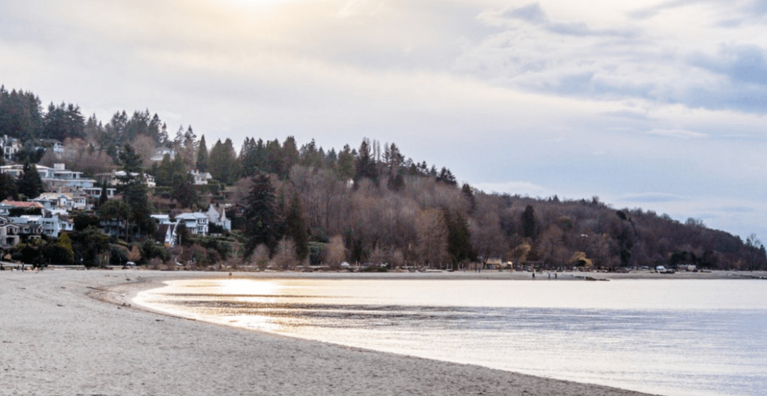 Vancouver beaches are safe for swimmers again
