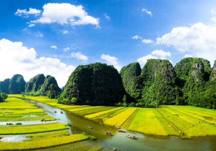 activities Hanoi