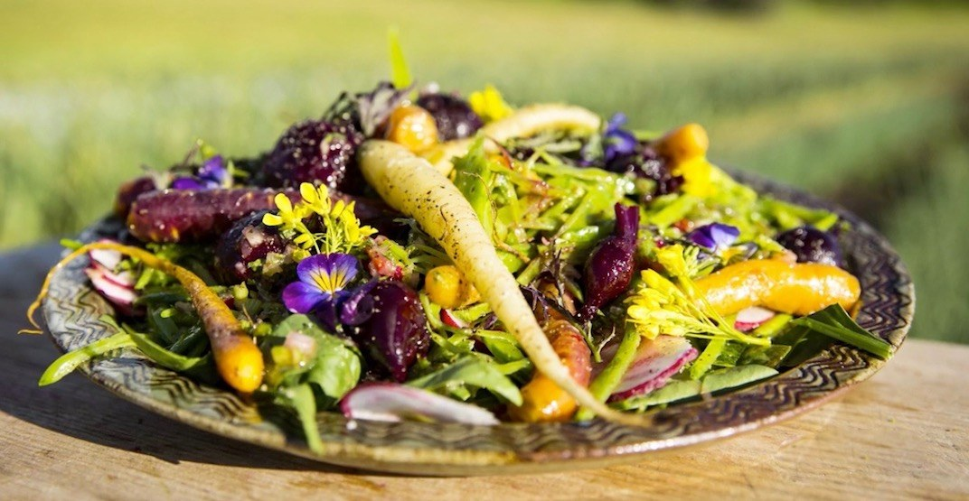 5 healthy recipes you need to try before summer's over (VIDEOS)