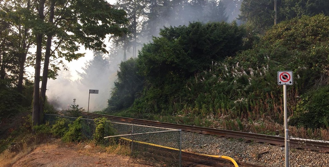 Fire crews contain brush fire that broke out in West Vancouver neighbourhood yesterday