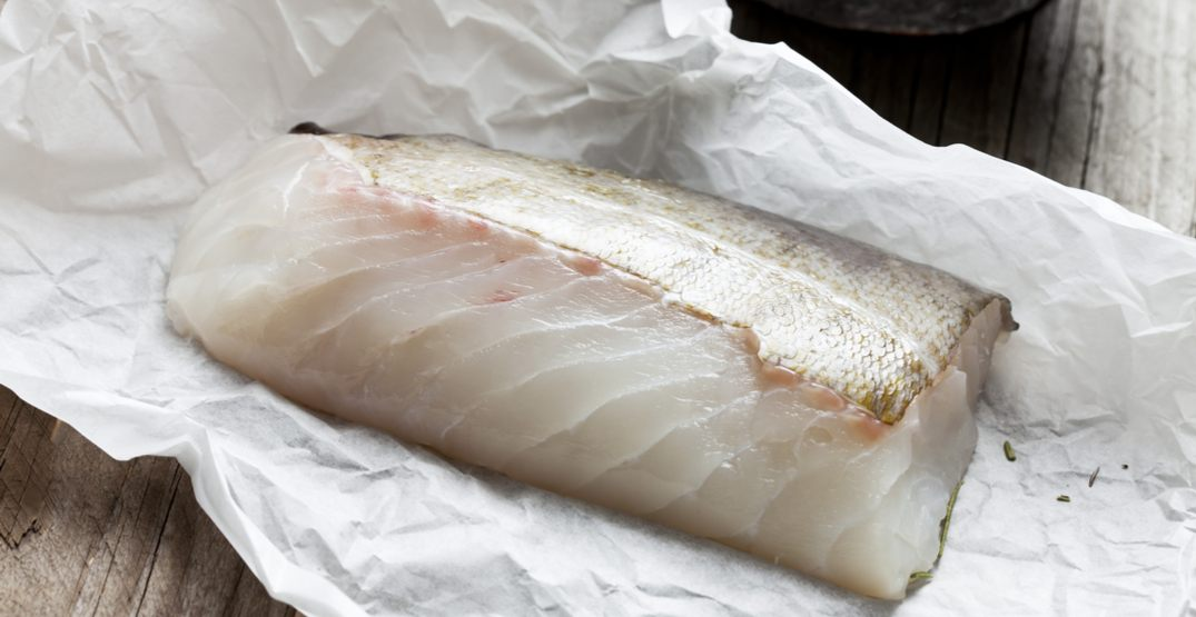 New report finds widespread mislabelling of seafood sold across Canada