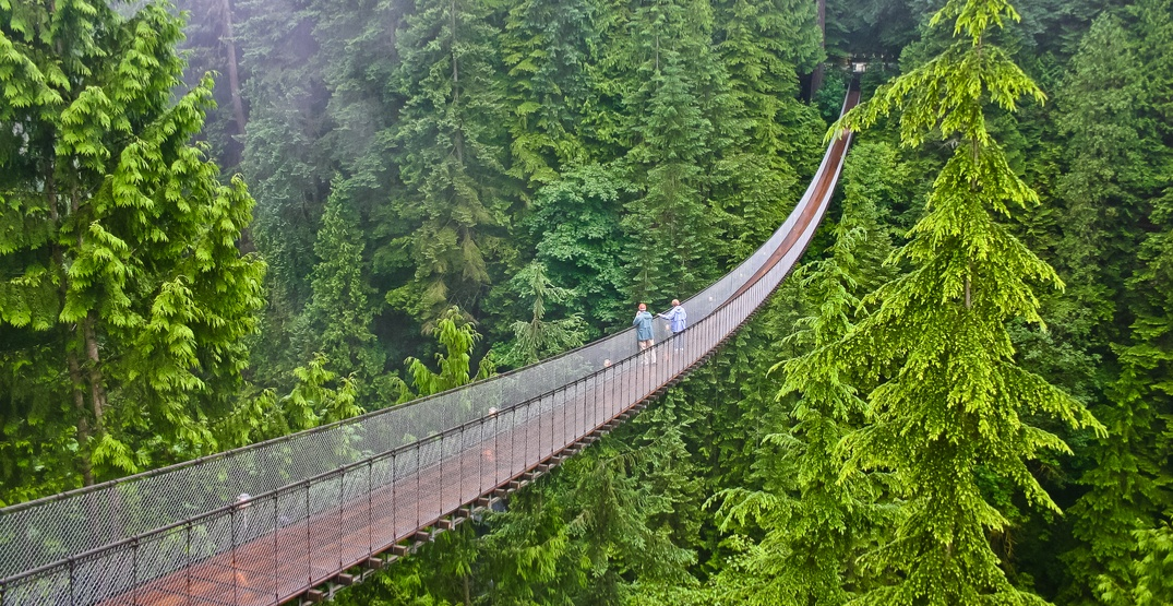 The Capilano Suspension Bridge is officially reopening this month