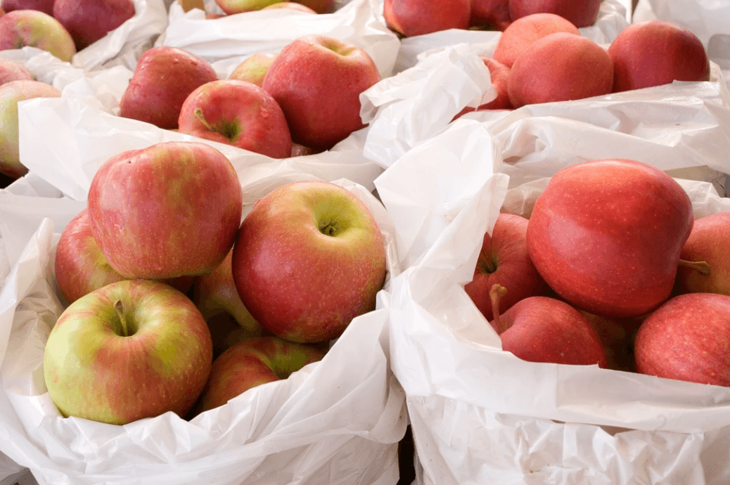 JC Agri Orchards