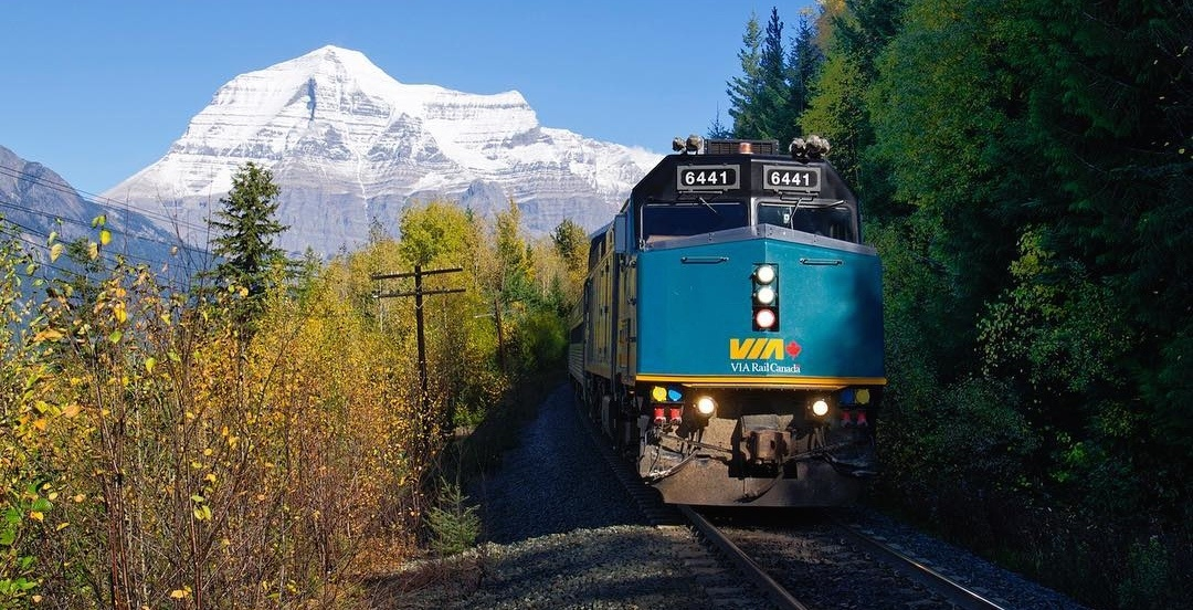 You can now bring pets with you aboard VIA Rail trains