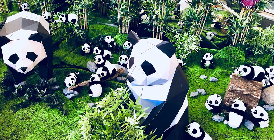 You can adopt one of 500 adorable pandas at this Metro Vancouver Mall