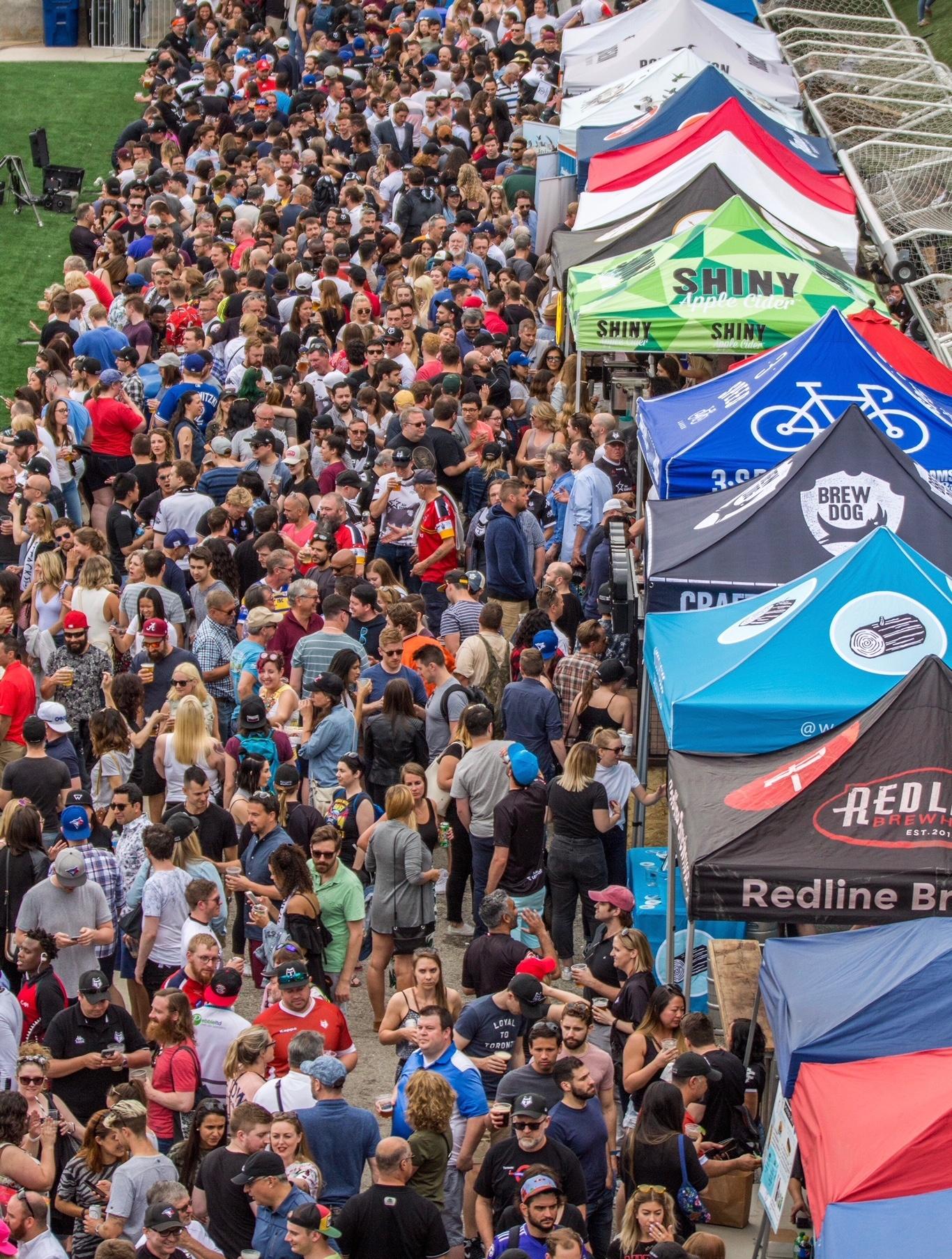 toronto wolfpack rugby beer festival
