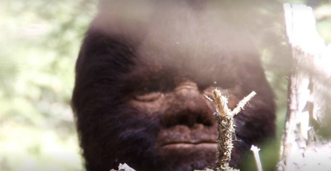 BC court axes filmmaker's lawsuit claiming that Sasquatch exists