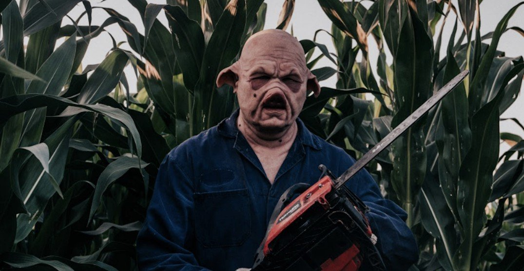 One of the most terrifying corn mazes in Canada is in Metro Vancouver (VIDEO)