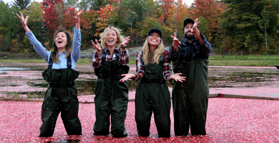 There's still time to check out this 'cranberry plunge' near Toronto
