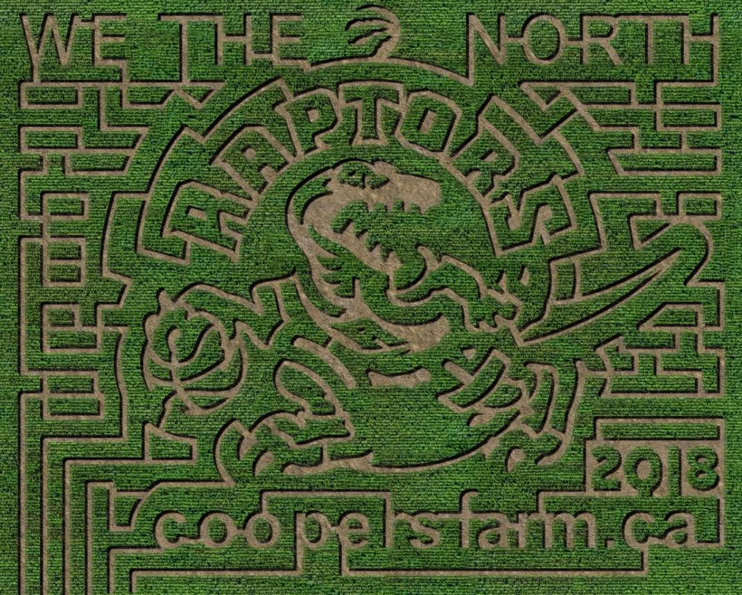 Coopers Farm raptors maze