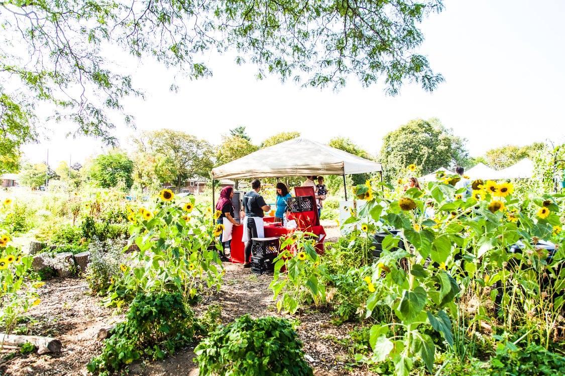 Thistletown Chef's Harvest Garden Party