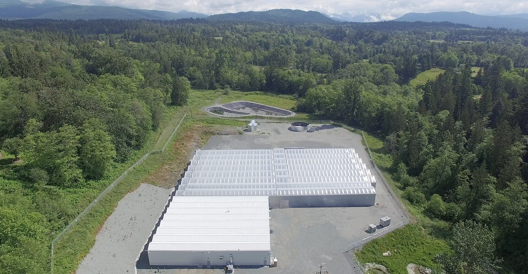Take a virtual tour of this BC cannabis production facility