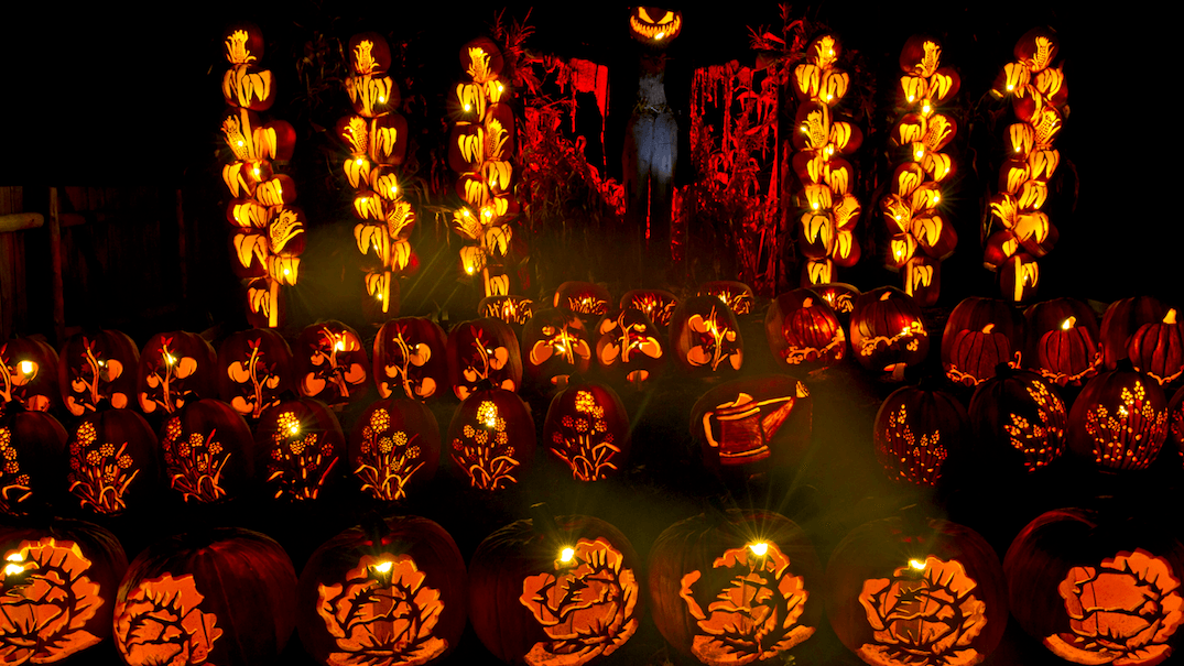 This is Ontario's must-see pumpkin festival (PHOTOS)