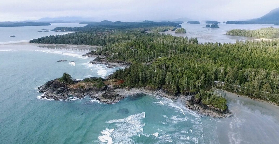Tofino, Ucluelet asking visitors from the Lower Mainland to stay away for now