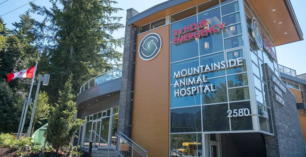 Huge 24/7 animal hospital just opened in North Vancouver