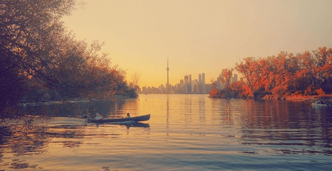 The 8 best places to see the leaves change in Toronto (PHOTOS)
