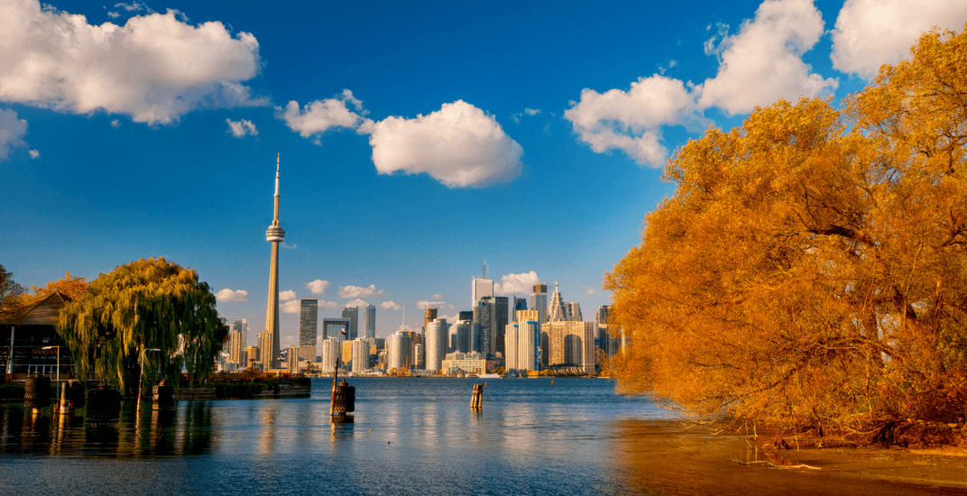 17 things to do in Toronto today: Saturday, November 9
