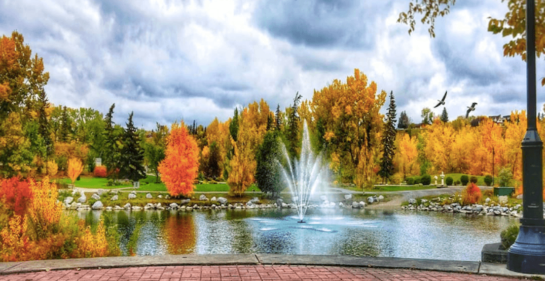 18 things to do in Calgary this week: October 1 to 4