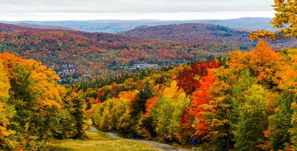 Best places to see beautiful fall foliage in Quebec over the long weekend