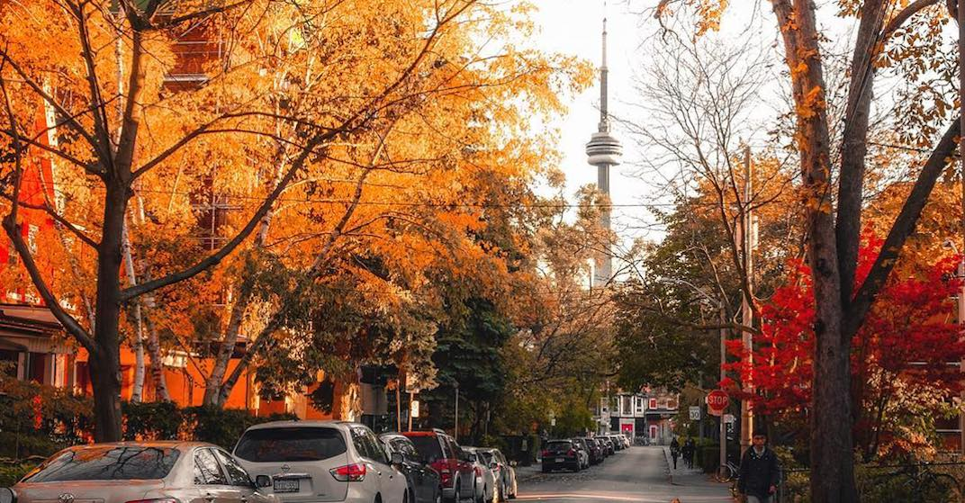 20 things to do in Toronto today: Saturday, October 13
