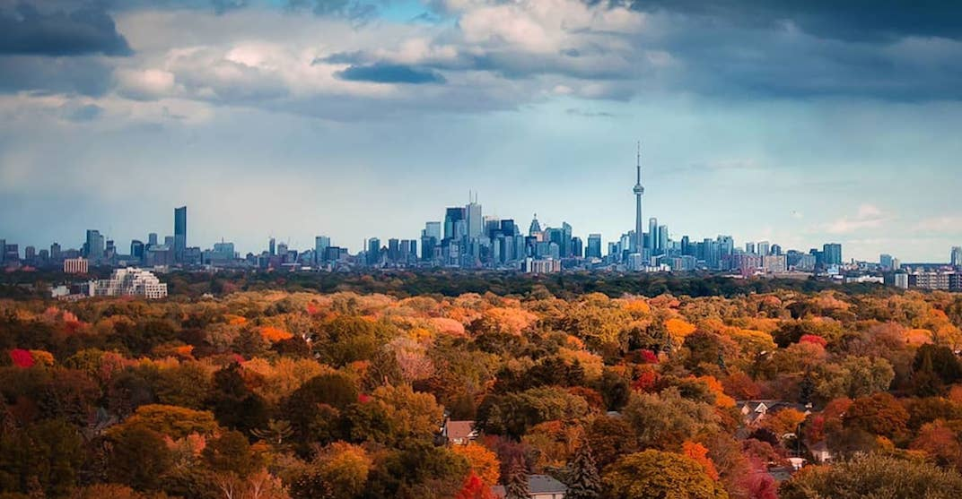 5 things to do in Toronto today: Thursday, November 1
