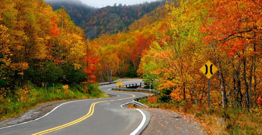 8 gorgeous spots to see leaves changing colour in North America