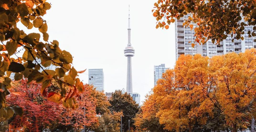 16 things to do in Toronto today: Sunday, October 28