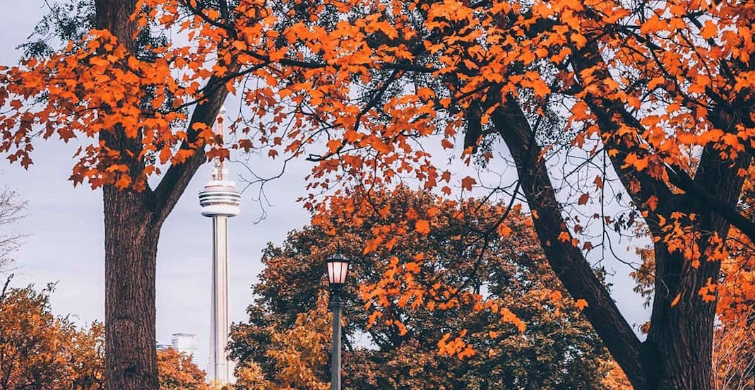 26 things to do in Toronto this weekend: October 26 to 28
