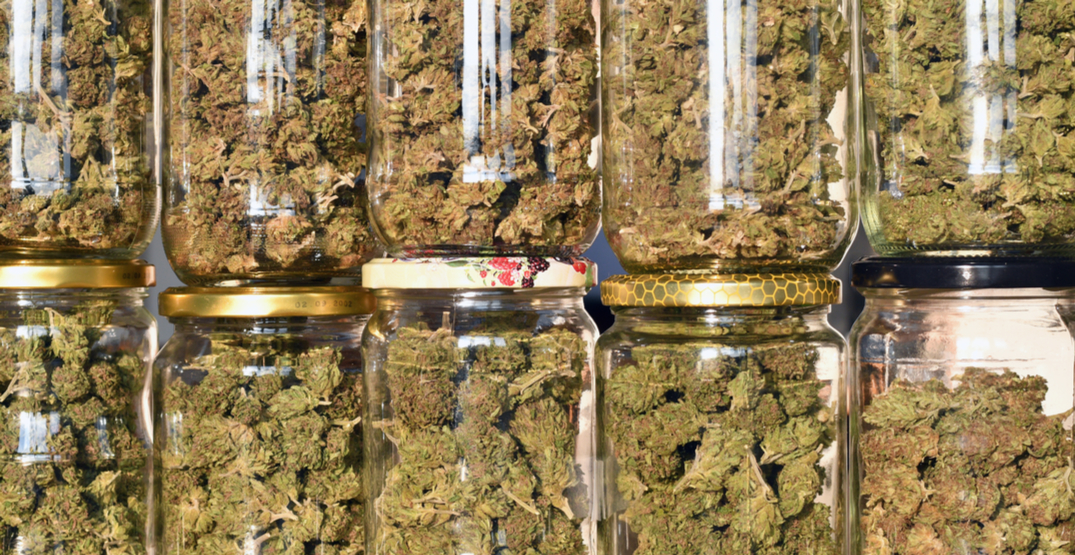 Tips on how to keep your weed fresh (VIDEO)