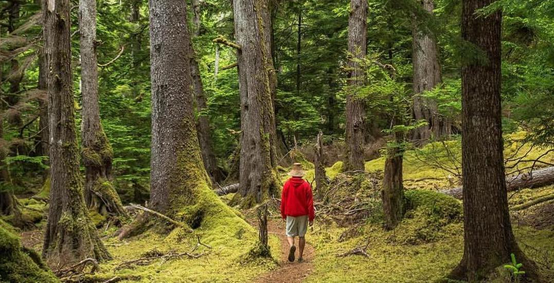 The places you need to go near Vancouver to immerse yourself in nature