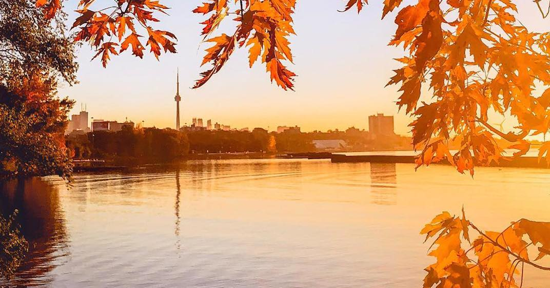 20 photos that show how spectacular Toronto is in the fall