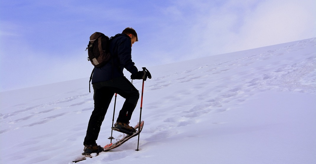 8 places to go snowshoeing in and around Calgary this winter