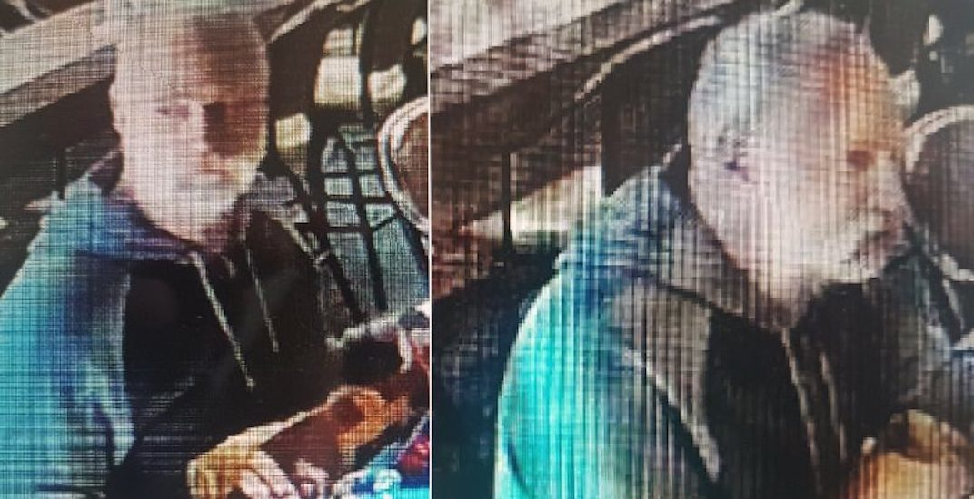 Police looking for suspect in alleged poppy donation theft in New Westminster