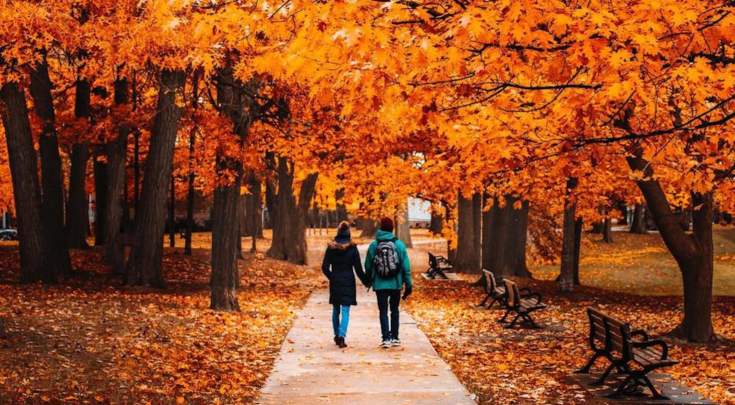 These 22 photos will make you fall in love with autumn in Toronto